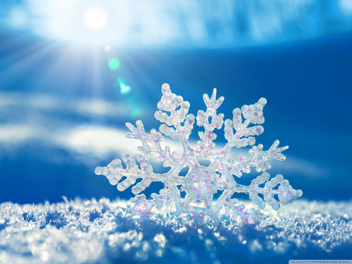 Bellingham Snow